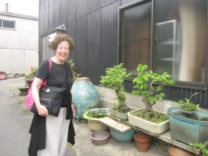 Delighted to discover bonsai growing in front of a house in Tokoname, Japan, where there are ancient kilns.