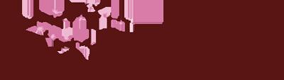 Ann McClellan Logo