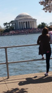The crowds were amazing!  You can hardly see the Jefferson Memorial's steps.