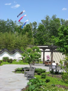 Courtyard with koi flags